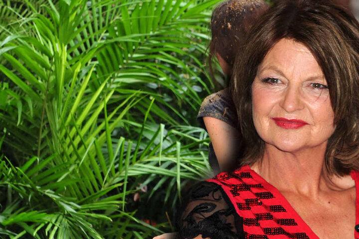 Auch mit dabei: NDW-Star Fräulein Menke (56).