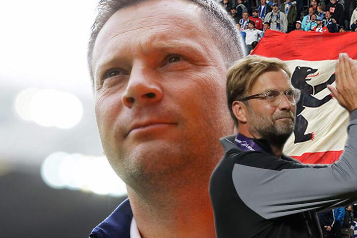 Gänsehaut pur! Zwei Traditionsvereine im direkten Duell. Dardai versus Klopp, beide Trainer freuen sich auf die Partie.