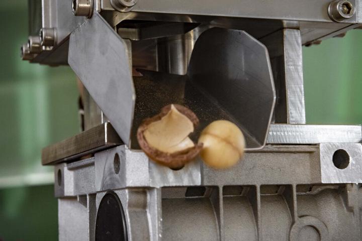 Die Maschine knackt selbst die harten Macadamianüsse mit Leichtigkeit und kann so Kleinbauern die mühsame Handarbeit erleichtern.