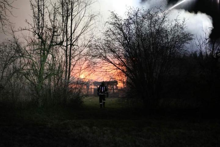 Das Feuer griff auch auf nebenstehende Gebäude über. Eine Hecke sowie ein Auto brannten ab.