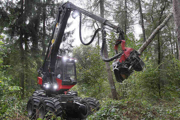 Der Harvester (Vollholzernter) ist ein schweres High-Tech-Gerät, mit dem im Wald gearbeitet wird.