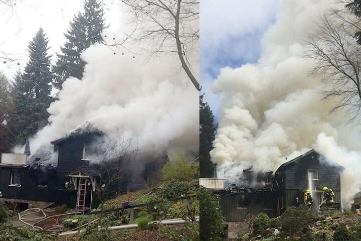 Personen wurden bei dem Brand nicht verletzt.