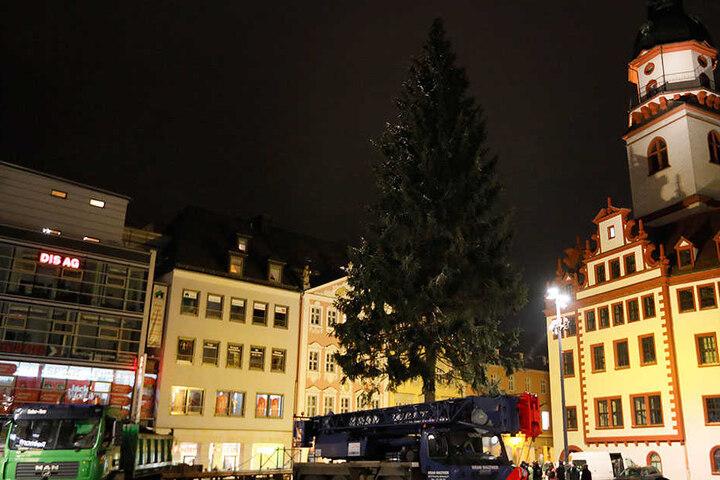 Endlich an Ort und Stelle: Um 18.45 Uhr befand sich die Chemnitzer  Weihnachtsfichte auf ihrem vorgesehenen Platz auf dem Markt.