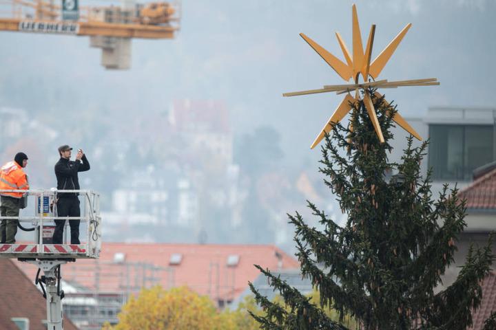 Auf dem Stuttgarter Schlossplatz wird es wieder festlich: Eine 25 Meter hohe Rotfichte wird den Platz in der Herzen der Stadt schmücken. (Archivbild)