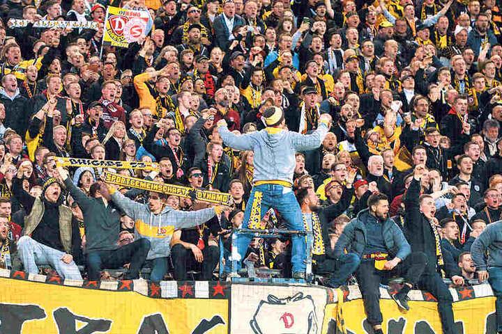 Diese Wand ist treu! Die mitgereisten Dynamo-Fans feierten nach dem Spiel lautstark ihre Lieblinge.