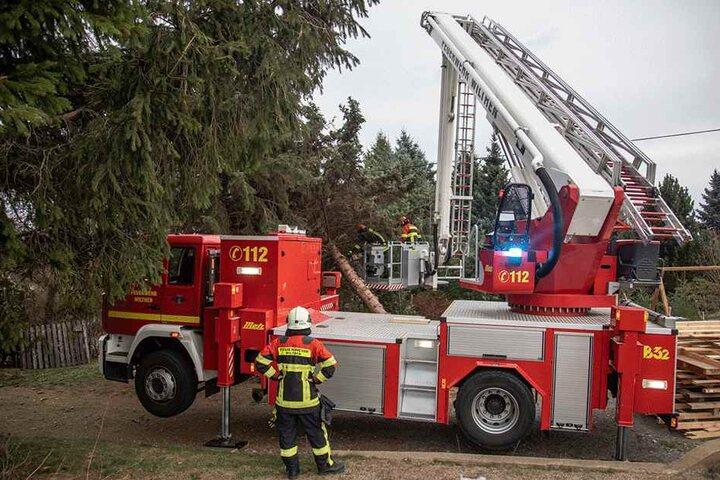 Die Feuerwehr musste einige Bäume beseitigen.