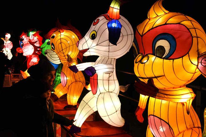Rund 12.000 Lichter lassen die chinesische Laternenkunst am Abend erstrahlen.