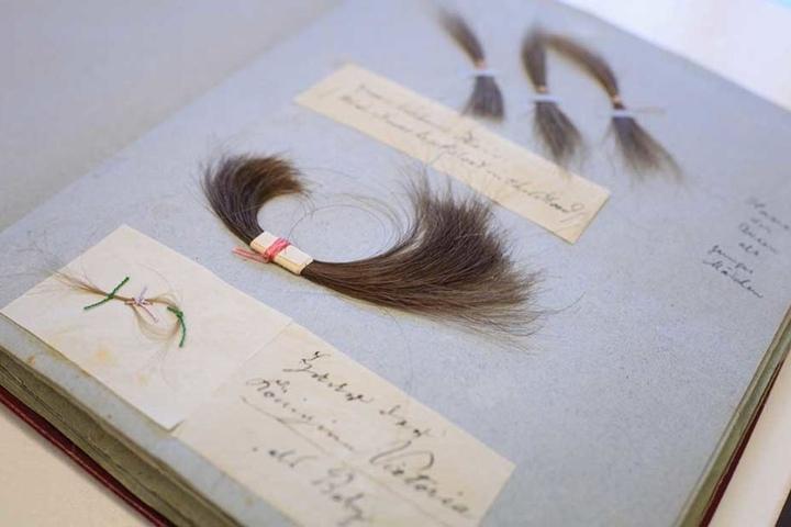 In dem Buch kleben auch Locken der ehemaligen englischen Königin.