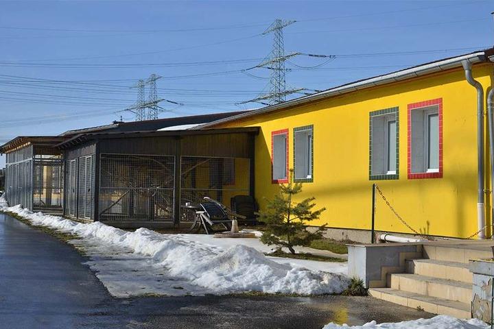 Das Tierheim Röhrsdorf kann sich über eine Spende freuen.
