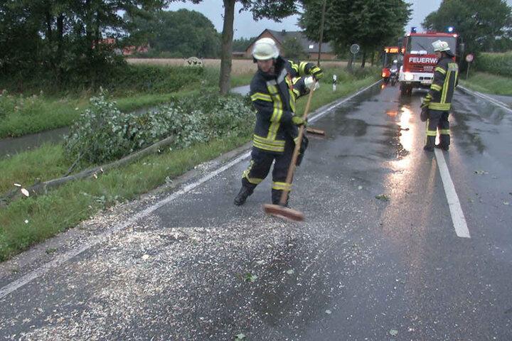 Die Feuerwehr kümmerte sich um die umgestürzten Bäume.