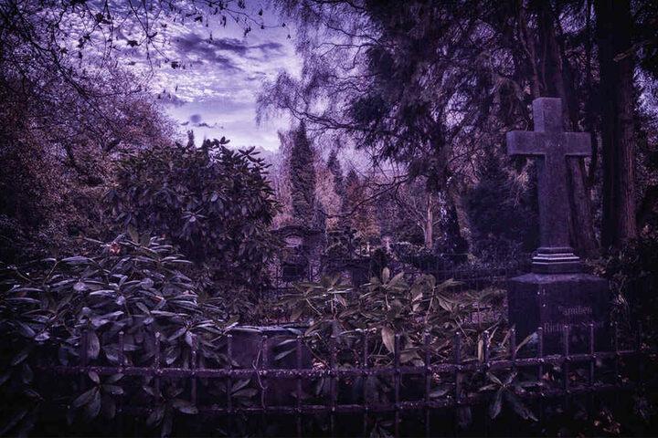 Verwuchert, düster, unheimlich: Dieser Friedhof ist nicht so weit entfernt, wie Ihr jetzt vielleicht denkt!