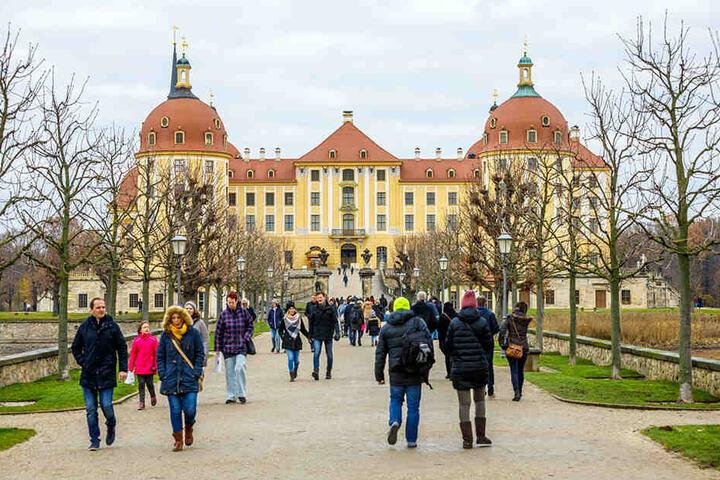 Wird die Ausstellung im November auf Schloss Moritzburg eröffnet, stehen die Besucher womöglich bis in die Allee Schlange.