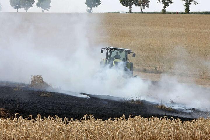 Insgesamt brannten etwa vier bis fünf Hektar ab.