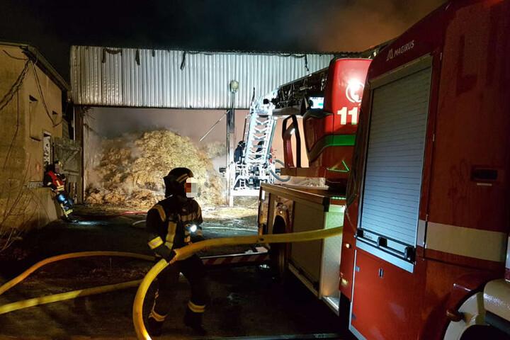 Die etwa 50 mal 10 Meter große Lagerhalle eines LPG-Hofs brannte komplett nieder.