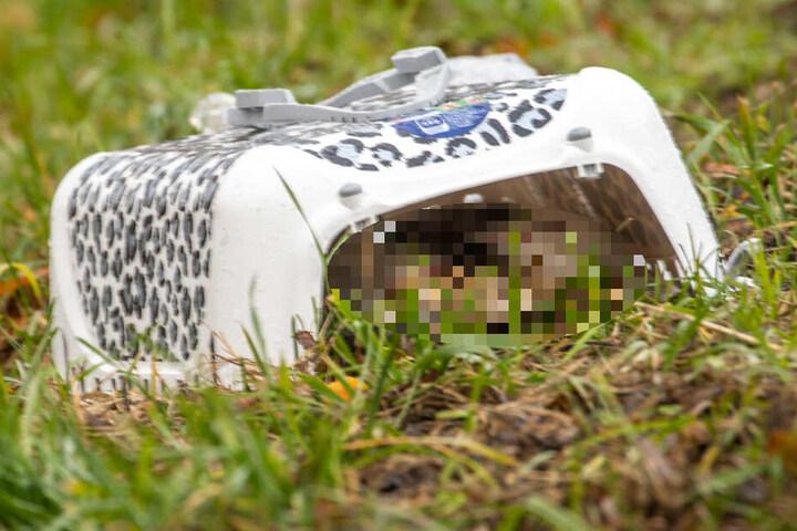 Getötet wurden leider zwei kleine Katzen, die im VW mitfuhren.