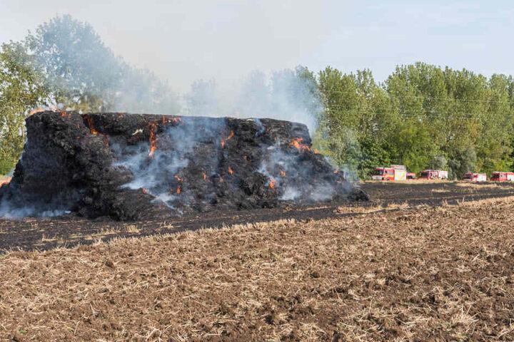 Das Stroh brannte in voller Ausdehnung.