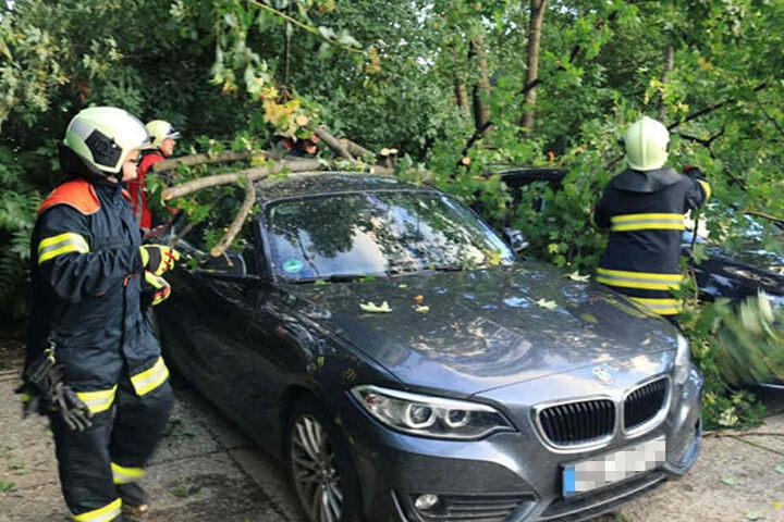 Auch in Erfurt musste die Feuerwehr Fahrzeuge von Bäumen befreien. Wie hier am Güterbahnhof.