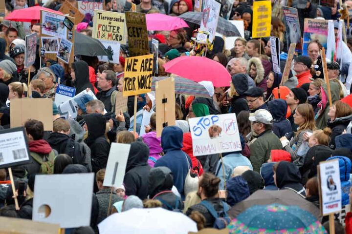 Viele Teilnehmer der Demo halten selbstgebastelte Schilder hoch.