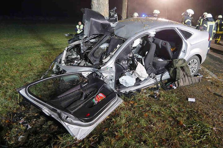 Das Auto hatte den Baum auf dem Beifahrersitz.