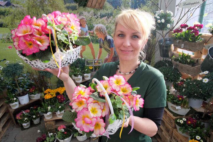 """Im """"Dehner""""-Gartenmarkt wartete gestern Mitarbeiterin Jana Wenzel (39) mit frischen Primeln auf die neuen Kunden."""