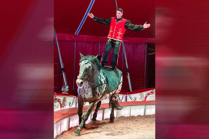 Pferdeakrobatik: Marlon Schmidt (vorne) als Kunstreiter in der Manege in Chemnitz.