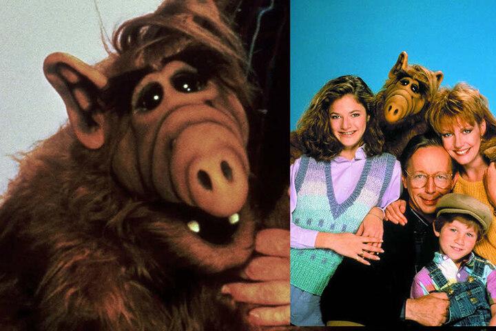 """Bekannt wurde er durch seine Rolle in der 80er-Jahre-Sitcom """"Alf""""."""