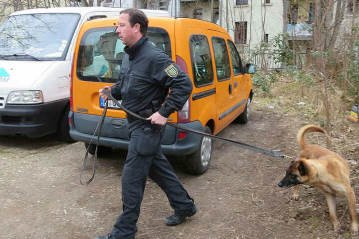 Mit Spürhunden wird das Gebiet abgesucht.