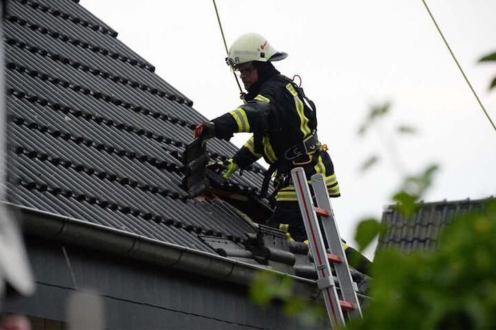Unter den Dachpfannen einer Doppelhaushälfte zeigte sich, dass die Isolierung gelitten hatte.