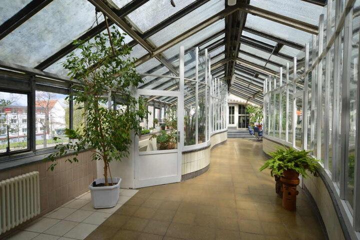 In dem Glasgang ist auch ein kleiner Wintergarten untergebracht.