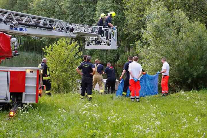 Feuerwehr und Rettungsdienst barg die Person aus dem Teich.