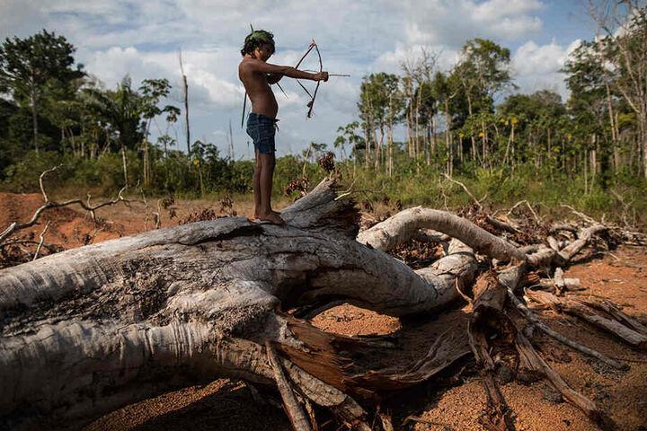 Die siebenjährige Emilia spielt mit einem handgefertigten Spielzeugbogen aus Stöcken und Blättern in ihrem Heimatdorf Ka'a kyr, während sie auf einem umgefallenen Baum steht.