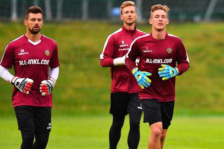 Patrick Wiegers (l.), Tim Boss (M.) oder Kevin Broll: Wer wird Dynamos neuer Stammtorwart?