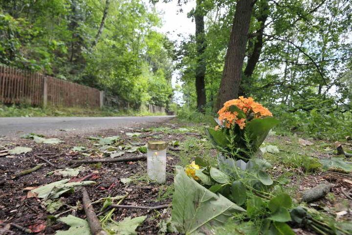 Ein herabfallender Baum-Ast erschlug die Radfahrerin Gisela M. (73).