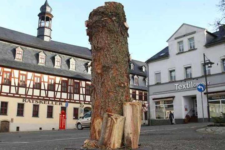 2016 wurde der erste Weihnachtsbaum in Lichtenstein (Erzgebirge) nach nur einem Tag wieder gefällt.