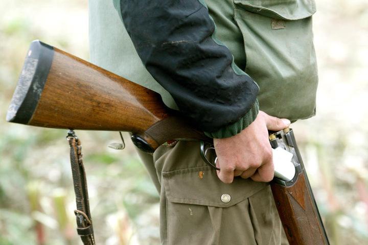Jäger dürfen Wölfe bislang nur in seltenen Ausnahme-Fällen schießen.