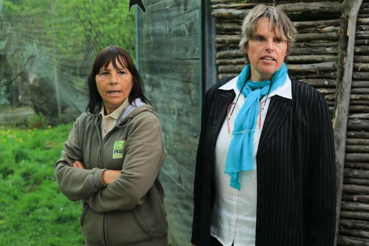 Tierpflegerin Sabine Fuß (li.) und Zoodirektorin Dr. Sabine Merz zeigten sich betrübt über den Tod der Löwin.