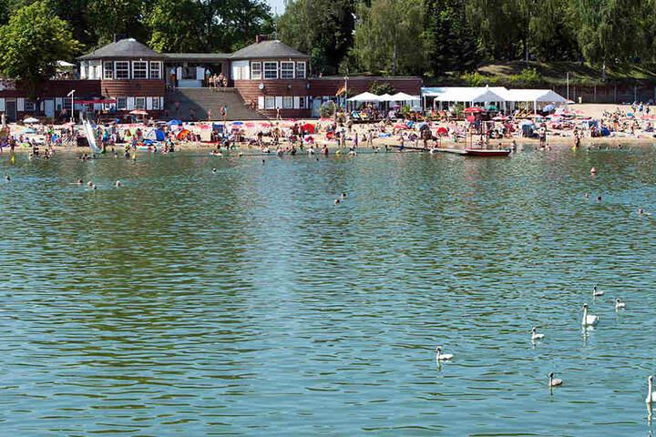 Für das Strandbad Plötzensee liegen derzeit noch keine Informationen zur E. coli-Belastung vor.
