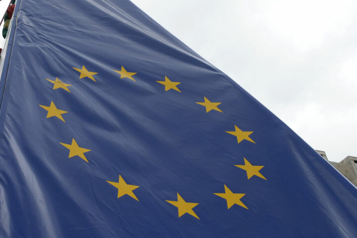 Am 26. Mai stehen die Europawahlen an. (Symbolbild)