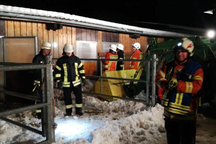 Die Einsatzkräfte befreiten die Tiere aus dem zusammengestürzten Stall.