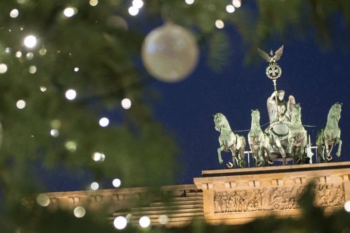 Auch dieses Jahr soll der Weihnachtsbaum aus Thüringen am Brandenburger Tor stehen. (Symbolbild)