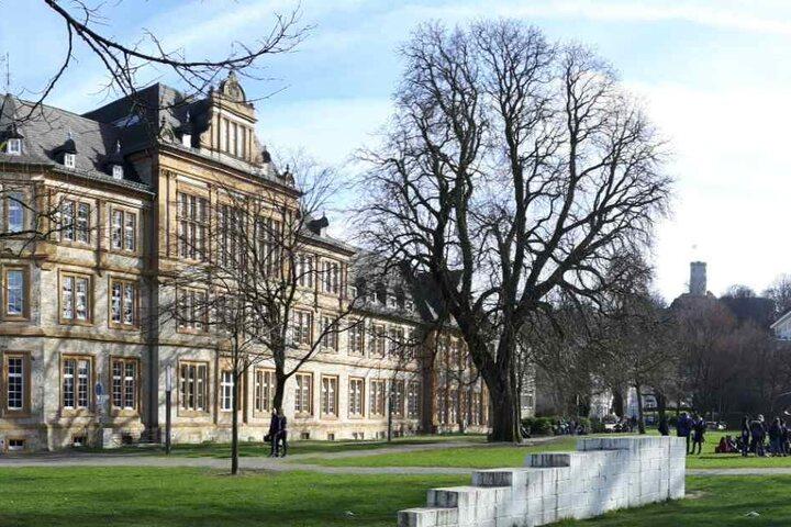 Auch der Park rund um die Kunsthalle ist ein grüner Ort mitten in der Bielefelder Innenstadt.