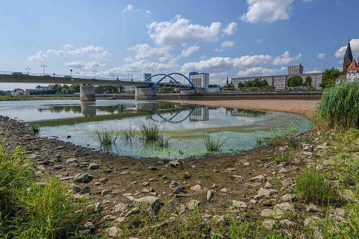 16. August 2018: Blick vom polnischen Ufer in Slubice in Richtung Frankfurt/Oder über das Niedrigwasser des Grenzflusses Oder. Der eigentliche Fluss verläuft hinter der Sandbank. Der Pegel des Flusses Oder stand am selben Tag bei 95 Zentimetern an der Peg