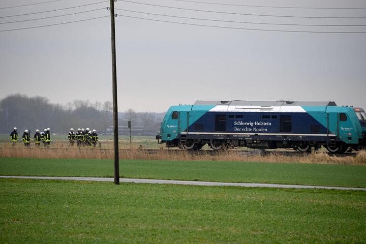 Ein Schäfer und vier Tiere sind am Dienstag von einem Zug erfasst und getötet worden.
