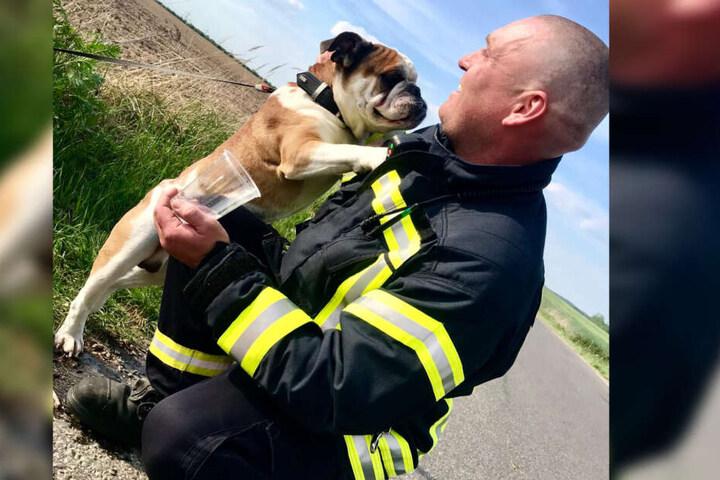 Aber schnell ist das Eis gebrochen und eine kleine Männerfreundschaft zwischen Feuerwehrmann Enrico Paul und Hund entsteht.