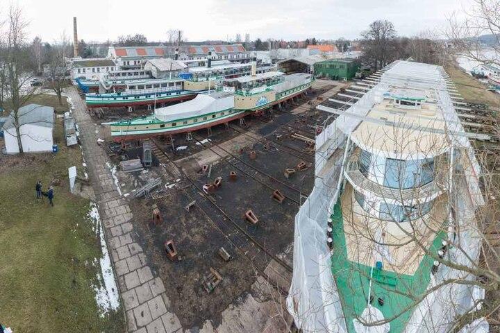 """Aufgebockt zur TÜV-Abnahme. Die Raddampfer """"Pillnitz"""", """"Meißen"""" und """"Wehlen"""",  sowie das Salonschiff """"August der Starke"""" liegen derzeit in der Werft."""