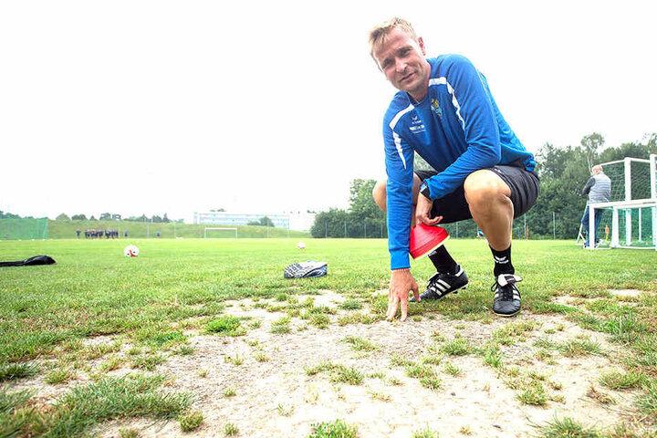 CFC-Trainer David Bergner zeigt es: Der Rasen auf dem Trainingsplatz ist trocken, verdammt trocken. Das gefällt ihm nicht.