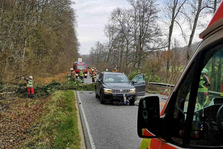 Warum der Baum umkippte, ist noch nicht geklärt. Die Insassen kamen mit leichten Verletzungen und einem Schrecken davon.