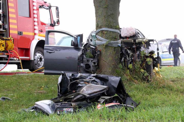 Der Fahrer soll ungebremst in den Baum gerast sein.