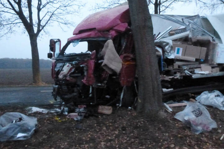 Der Lastwagen krachte mit dem Führerhaus gegen einen Baum.