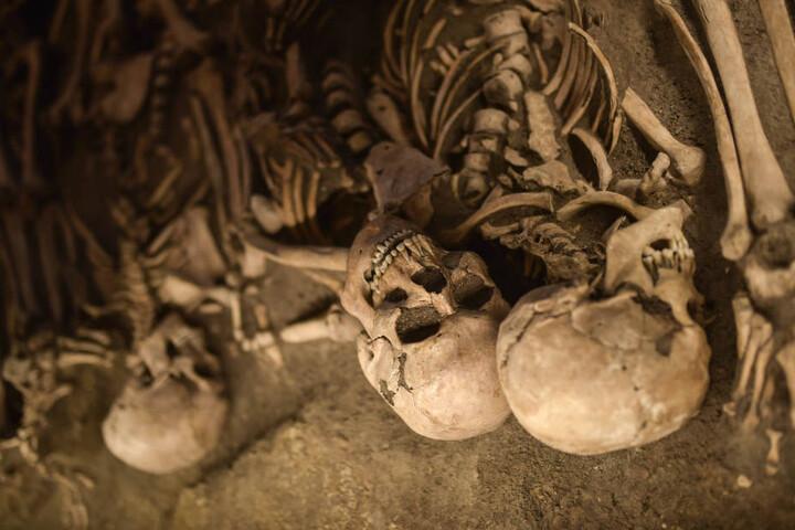 Experten schätzen, dass insgesamt 4000 Skelette unter der Erde liegen (Symbolbild).